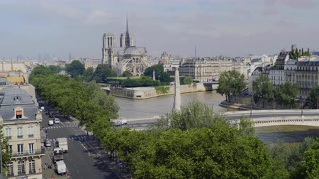 Aerial view of Notre Dame in Paris, Tournelle Bridge, statue of St. Genevieve