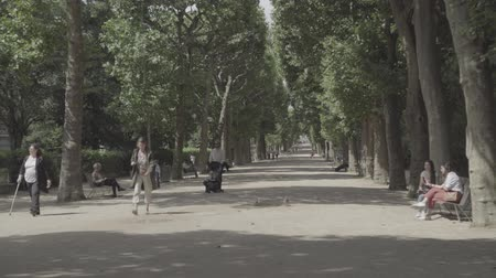 Walking alley in Botanical garden in Paris Стоковые видеозаписи