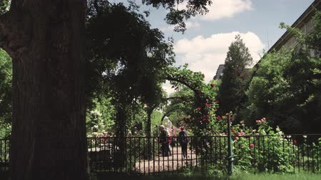 People are walking in rosarium, Botanical garden near greenhouse