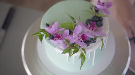 blueberry cheesecake : Confectioner neatly decorates turquoise wedding biscuit cake with blueberries Stock Footage
