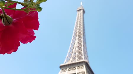 The Eiffel tower and the rose flower .