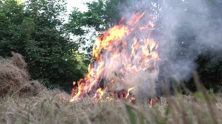 bush fire : Burning dry grass in the garden Stock Footage