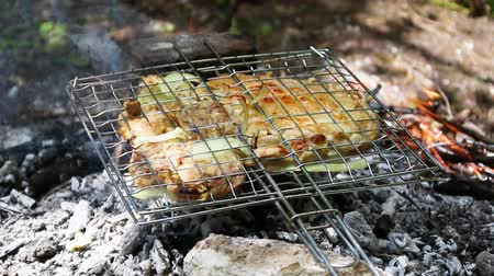 Fresh meat baked in a metal grid on coals on a fire in the summer forest Стоковые видеозаписи