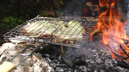 Delicious juicy meat cooking on the grill on fire in the summer forest Стоковые видеозаписи