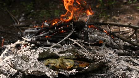 Cooking on a campfire. Nature and recreation