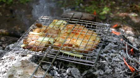 špejle : Fresh meat baked in a metal grid on coals on a fire in the summer forest Dostupné videozáznamy