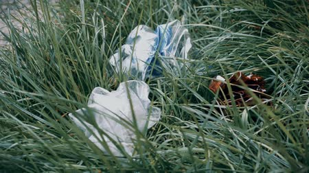 Plastic bottles, garbage lying in the grass Stok Video