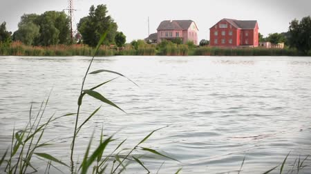 View of the river with waves and reeds and houses on the other side, calmly and peacefully