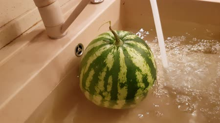 Large ripe watermelon lies in the kitchen sink under the stream of water