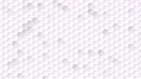 folyamatos : Motion white hexagon abstract background. Elegant and luxury dynamic style for business template Stock mozgókép