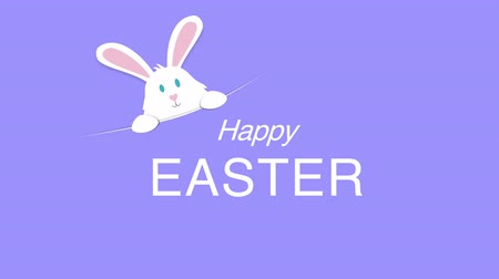 auguri pasqua : Animated closeup Happy Easter text and rabbit on purple background. Luxury and elegant dynamic style template for holiday