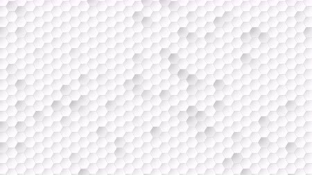 tecnológica : Motion hexagon abstract background. Elegant and luxury dynamic geometric style for business template