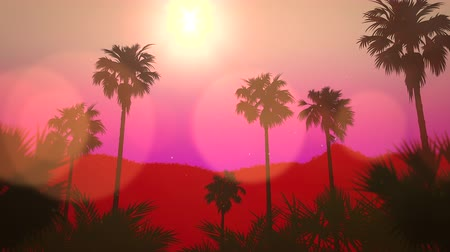hawaii : Panoramic view of tropical landscape with palm trees and sunset, summer background. Elegant and luxury dynamic 80s, 90s retro style animation footage