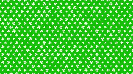 patrik : Animation Saint Patricks Day holiday background with motion green shamrocks. Luxury and elegant dynamic style template for holiday