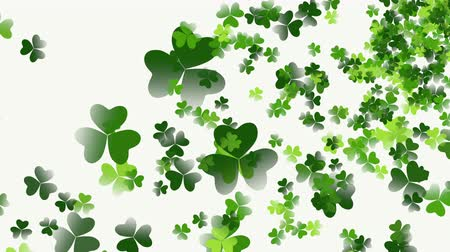 jetel : Animation Saint Patricks Day holiday background with motion green shamrocks. Luxury and elegant dynamic style template for holiday
