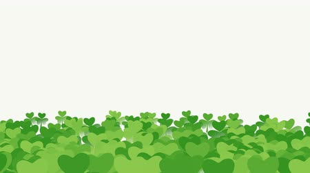 st patrick : Animation Saint Patricks Day holiday background with motion green shamrocks. Luxury and elegant dynamic style template for holiday