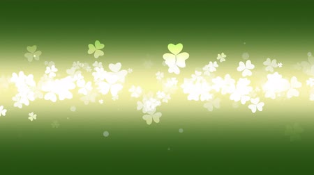 trojlístek : Animation Saint Patricks Day holiday background with motion green shamrocks. Luxury and elegant dynamic style template for holiday