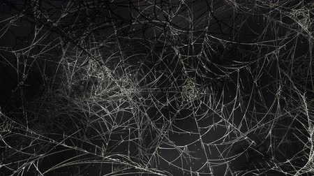 паук : Mystical horror background with dark spiderweb and motion camera. Holiday Halloween, abstract backdrop. Luxury and elegant dynamic animation footage of halloween theme
