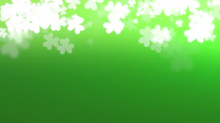 luck : Motion green shamrocks, Saint Patrick Day animation background. Luxury and elegant dynamic style template for holiday Stock Footage
