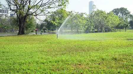 sprayer : Garden water sprinkler system. Stock Footage