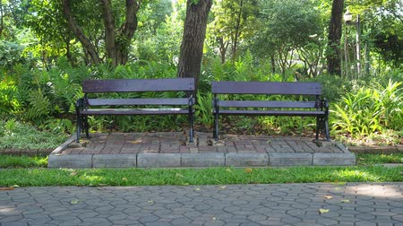 Wooden bench in garden.