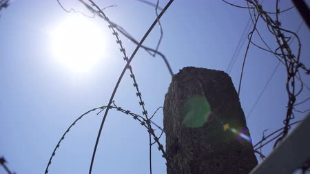 The sun shines through the barbed wire. Shooted in motion.
