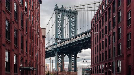 brug : Time lapse uitzicht op Manhattan Bridge van Washington straat, Brooklyn, New York, Verenigde Staten Stockvideo