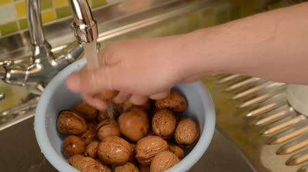 lave : Nut walnut. Wash the nuts in the colander in the kitchen in the sink. Under the stool of water, wash nuts with hands from dirt. Stock Footage