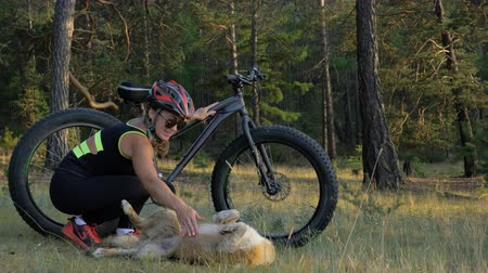 çok güzel : Fat bike also called fatbike or fat-tire bike in summer riding in the forest. Beautiful girl and her bicycle in the forest. She met the dog in the woods and stroked her. The dog is very kind and good.