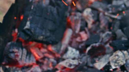 smolder : Coal burning in a brazier grill bbq. We have to cook meat, fish, sweet hot pepper, cutlet and sausages on these coals. The action takes place on a picnic. Stock Footage