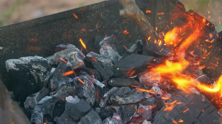 colocar : Coal burning in a brazier grill bbq. We have to cook meat, fish, sweet hot pepper, cutlet and sausages on these coals. The action takes place on a picnic. Stock Footage