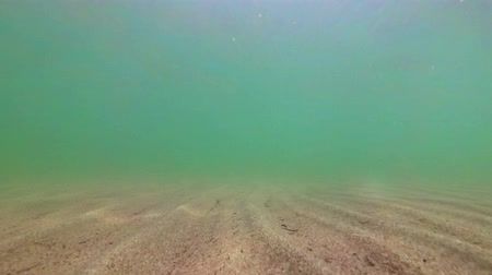 scuba diving : Shooting the sea sand bottom. Sand underwater on shallow seabed with natural light through water surface.