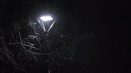 влажность : Snowing against the street lamp. Snow in slow motion in 180fps. Snowflakes beautifully fall.