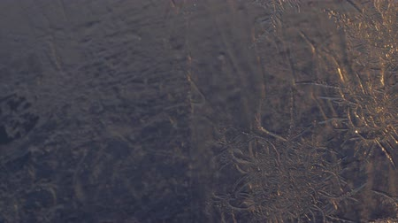 святки : Snowflakes on the window in supermacro shooting. They are highlighted by the sunset. Real real snowflakes shot very close.