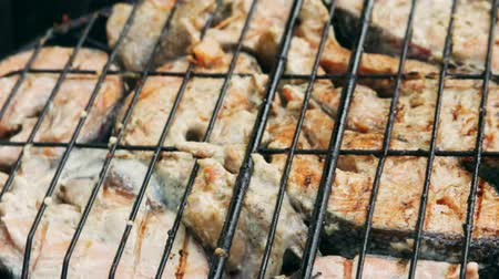 seafood recipe : Fried grilled salmon on bbq. Marinade from white sauce and lemon. Trout fish.