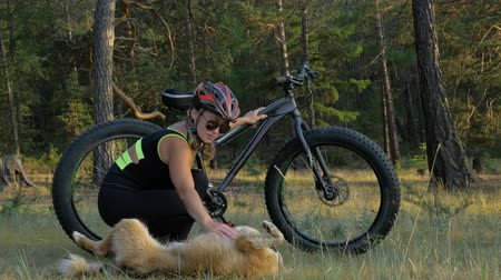 slough : Fat bike also called fatbike or fat-tire bike in summer riding in the forest. Beautiful girl and her bicycle in the forest. She met the dog in the woods and stroked her. The dog is very kind and good.