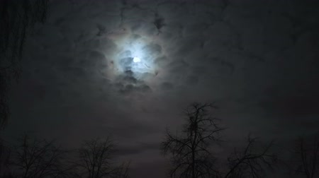 luar : the full moon in the night sky, flying past her in clouds, timelapse