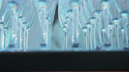 champagne flute : close - up of champagne glasses standing on the table