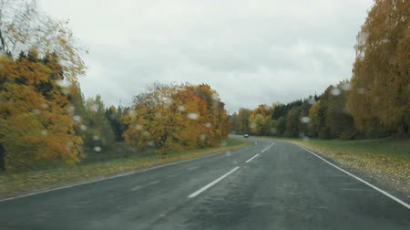 fogged : car rides on a country road in autumn in rainy weather, view from the front window