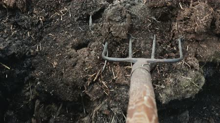 muck : Man loads organic fertilizer in a wheelbarrow on his own farm. Manual labor. First person view