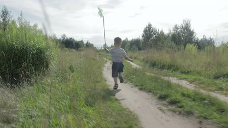 motyl : Cheerful little boy in shorts and a t-shirt, running on the lawn and catching a butterfly green net Wideo