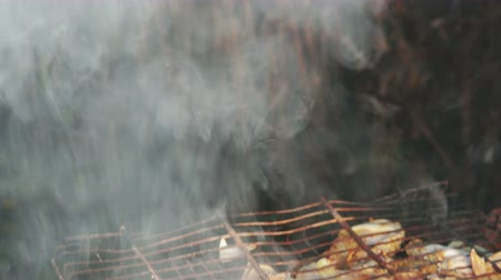 špejle : Barbecue of chicken and onions is cooked on the charcoal grill barbecue