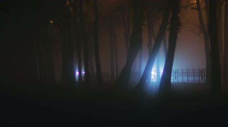 horror : Blurred image of the night city in thick fog, adverse weather conditions. Lights headlights of passing cars, making their way through the haze on the background of trees