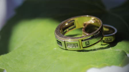platina : Wedding, wedding rings on a green leaf of a flower, close-up. The concept of wedding, Celebration and festivity
