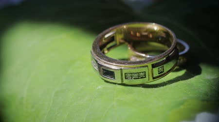 кора : Wedding, wedding rings on a green leaf of a flower, close-up. The concept of wedding, Celebration and festivity