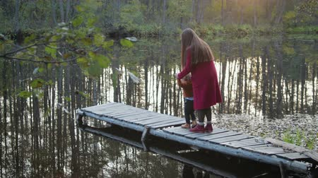 avançar : The General plan of two people, mother and son sitting and playing in the fresh air, on the pier near the forest lake. Around Sunny autumn weather Stock Footage