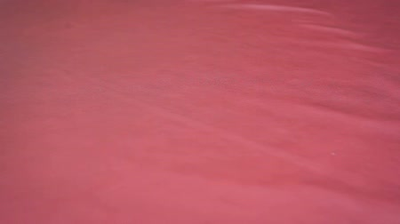 levelling : Close-up of a womans hand levelling cloth of red genuine leather on the table in the workshop