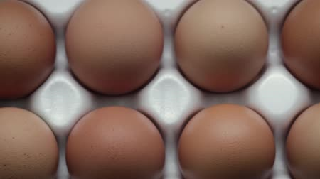 упакованный : Dolly shot of the view from the top ten chicken eggs with orange shell, Packed in a white tray