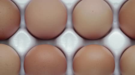 dozen : Dolly shot of the view from the top ten chicken eggs with orange shell, Packed in a white tray