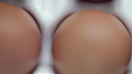 rád : Dolly shot of the view from the top ten chicken eggs with orange shell, Packed in a white tray